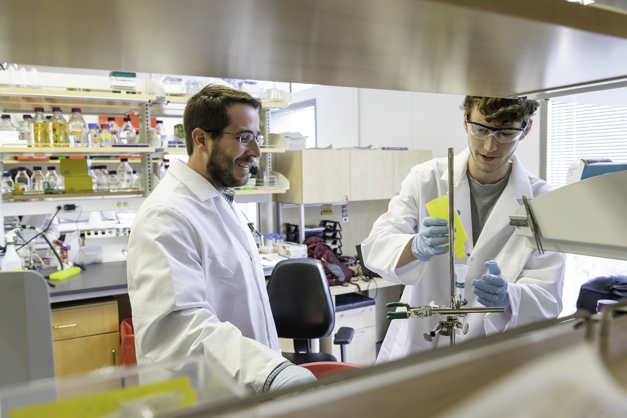 Jason S. McLellan, associate professor of molecular biosciences, left, and a male graduate student Daniel Wrapp, right, work in the McLellan Lab at the University of Texas at Austin