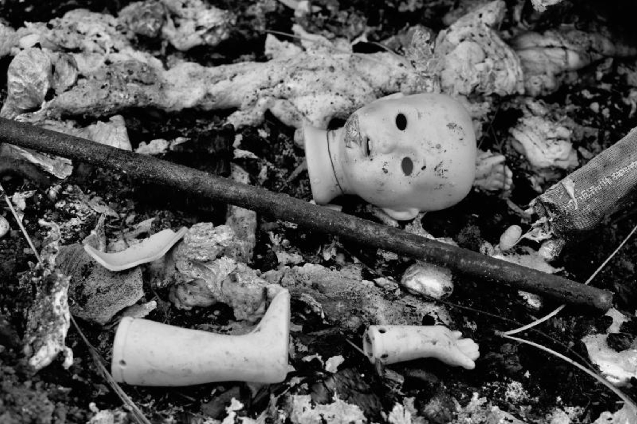 black and white photograph of a burned landscape with a pieces of broken baby doll — head, arm, leg — at the center of the frame