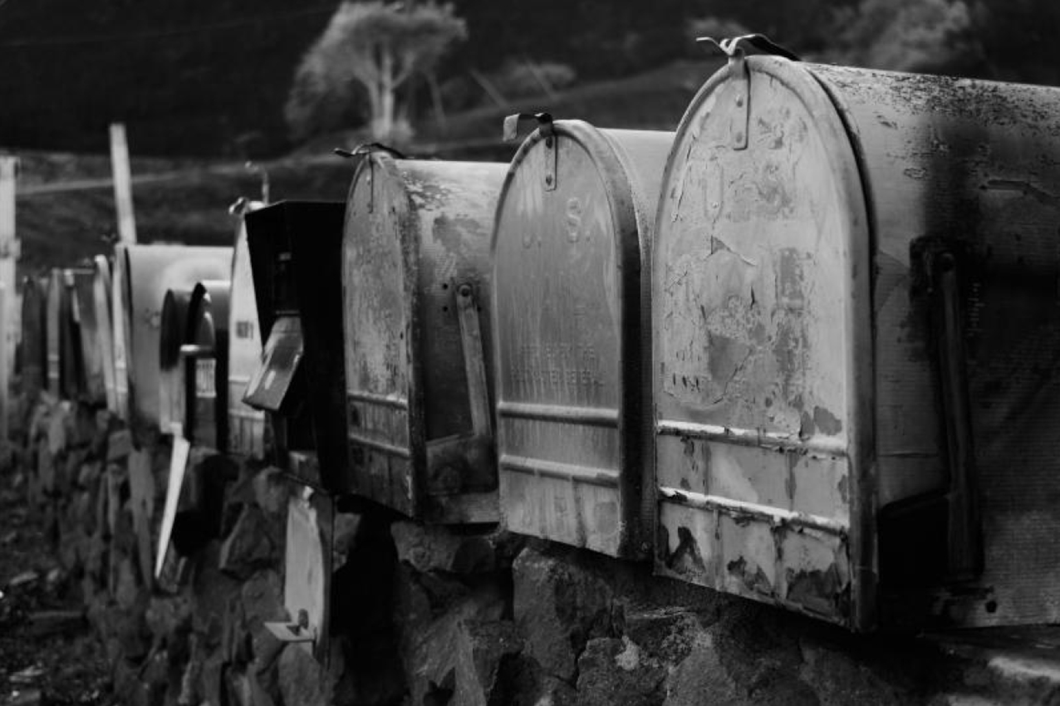 black and white photograph of a row of burned mailboxes